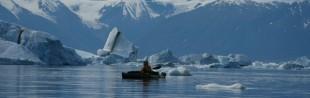 Groenland Scoresbysund 2009 - Karavaniers 281 1260x400